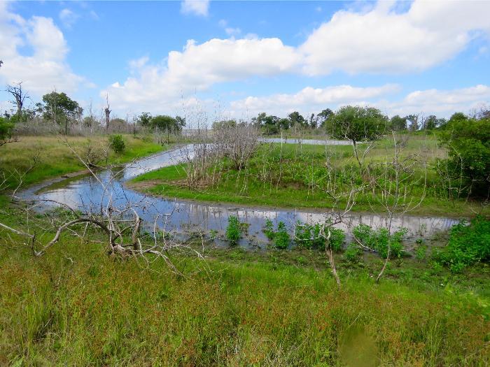 Review Lake Somerville State Park Birch Creek Unit