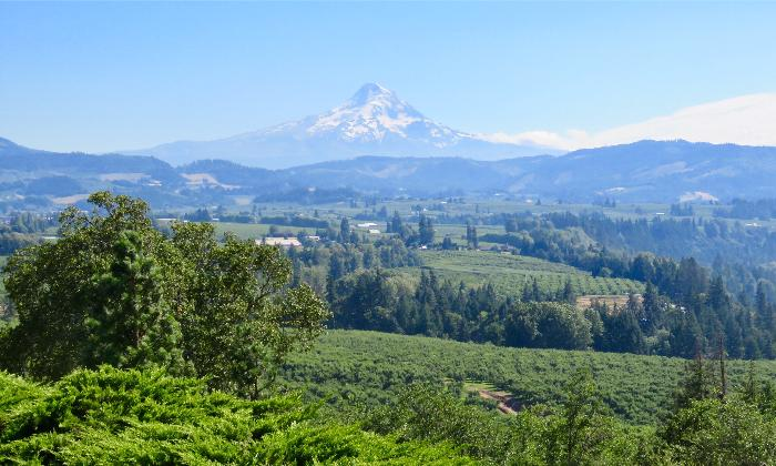 Driving the Mount Hood Scenic Byway