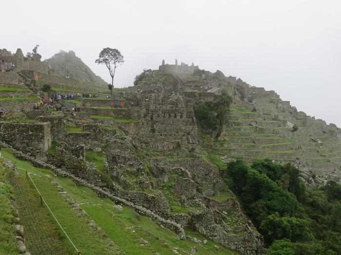 Agricultural and Urban Sectors of Machu Picchu