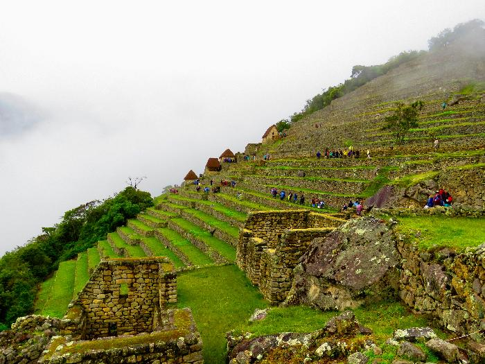 Agricultural Sector of Machu Picchu