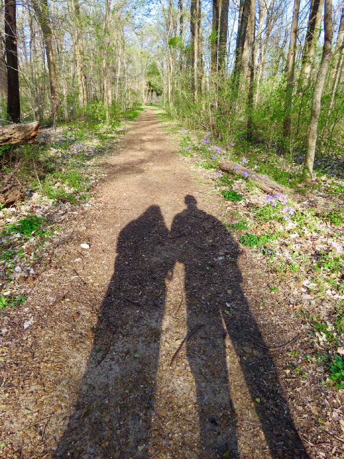 Following our Shadows in Meeman-Shelby Forest State Park