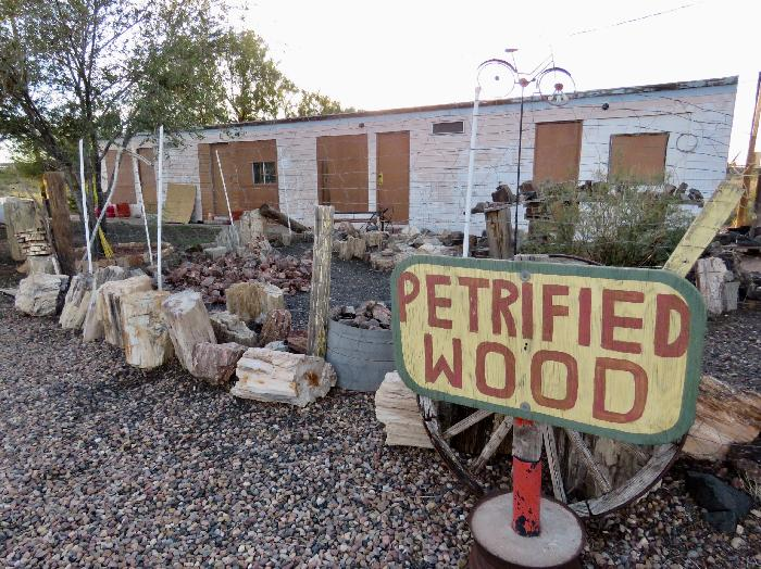 Petrified Wood for Sale at Sun Valley RV Resort