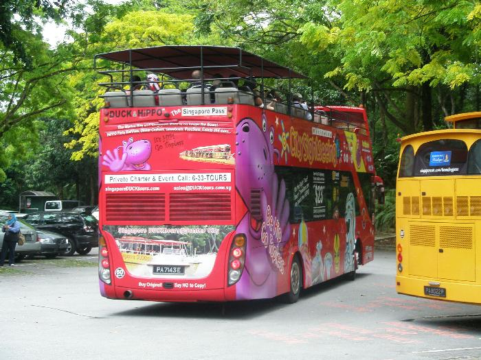 Hop-on Hop-off Bus