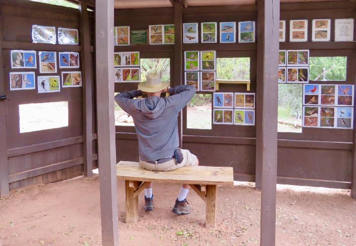 Searching for Wildlife at the Viewing Blind in Palo Duro Canyon State Park