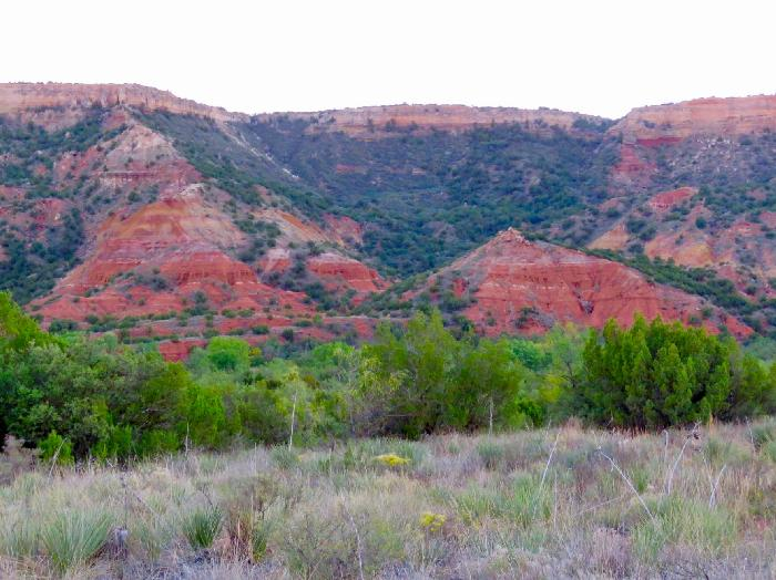 Viewing the Spanish Skirts from the Palo Duro Canyon Floor