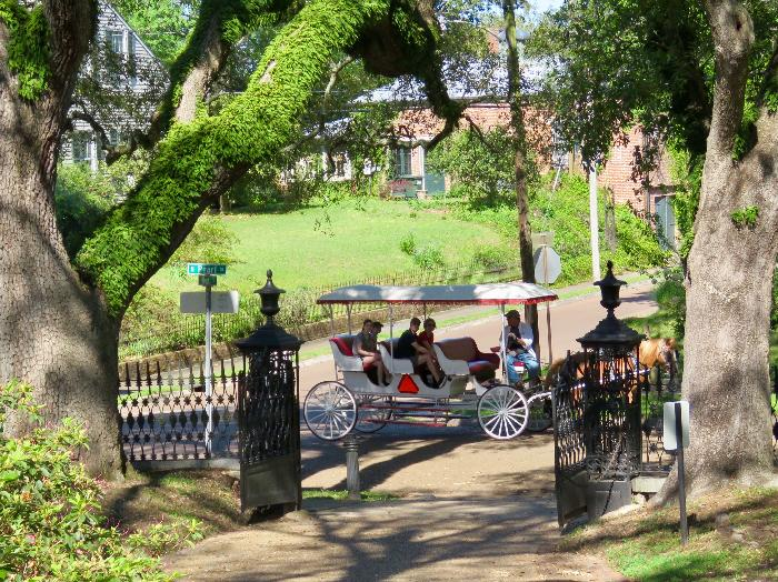 Southern Carriage Tours