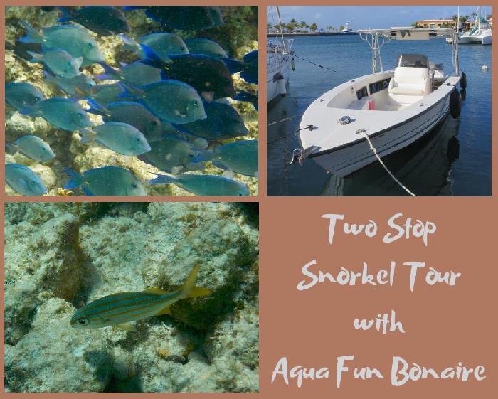 Two Stop Snorkel Tour with Aqua Fun Bonaire