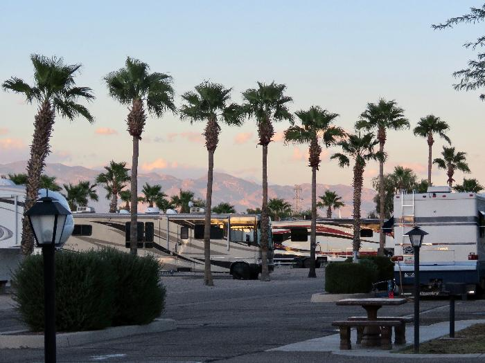 So Much To Do, So Little Time at Rincon Country West RV Resort