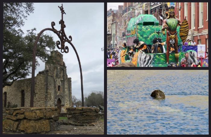 Mission: Manatees, Mardi Gras, Missions and More