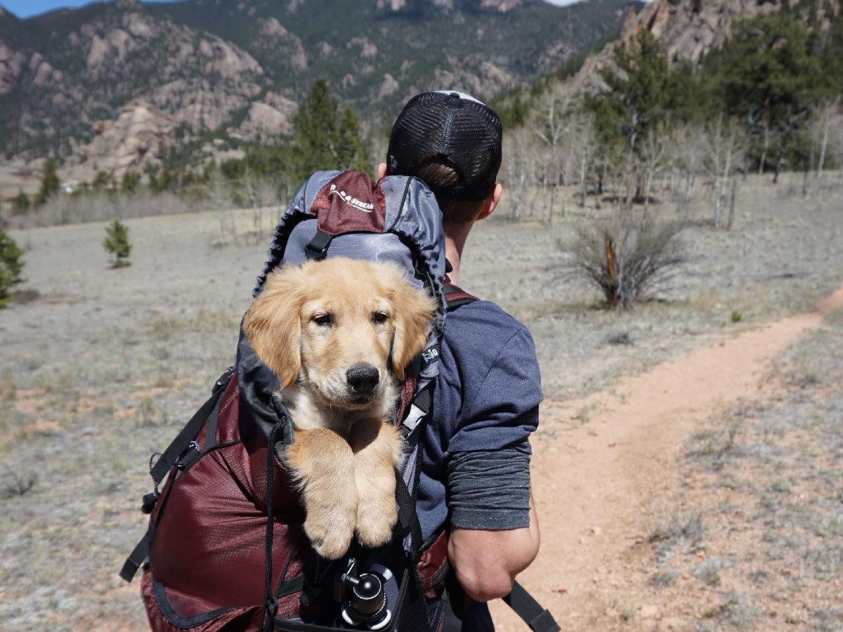 Ready to Start Hiking? Check Out these Beginner Tips!