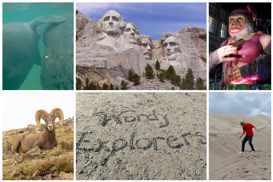 2020 Hindsight: The Wordy Explorers' Travel Year